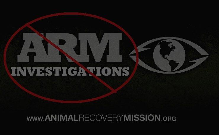 ARM_logo2